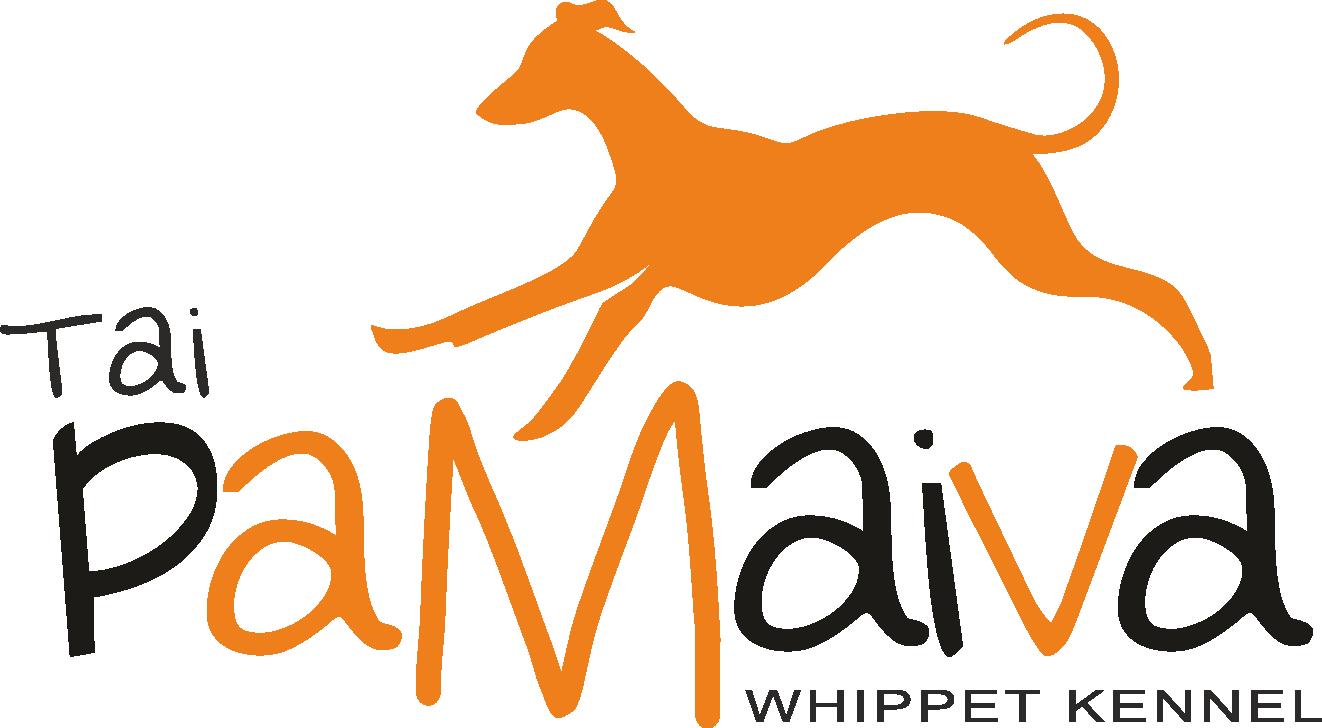 TaiPamaiva Whippet Kennel